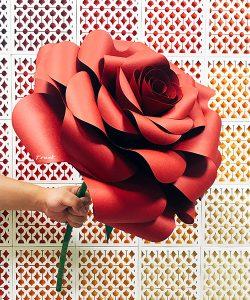 手拿花-玫瑰-圖3
