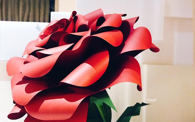 手拿花-玫瑰-封面