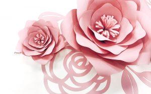 紙花裝飾-封面