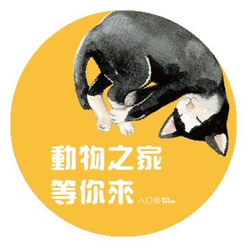 台北市動物保護處-犬貓認養感恩活動-圖5