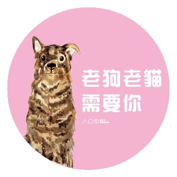 台北市動物保護處-犬貓認養感恩活動-圖7